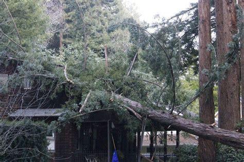 massive tree falls  larkspur home  area power