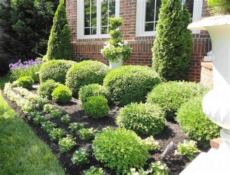 Garden Decorative Bushes by Bushes For Landscaping Privacy Bistrodre Porch And