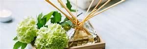 Parfum Maison Naturel : fabriquer un parfum d 39 int rieur naturel et sans toxiques ~ Farleysfitness.com Idées de Décoration