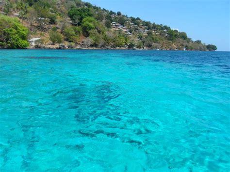 taman laut perairan selat pantar alor tempat wisata