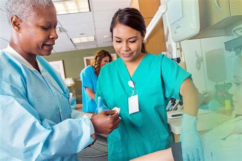 nursing schools find nursing schools  programs