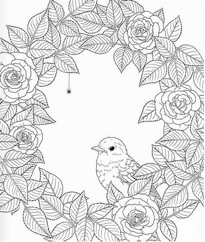 Coloring Adult Nature Pages Harmony Blank Pg