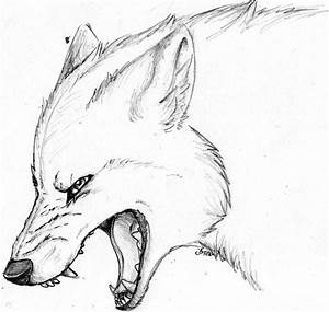 Pics For > Angry Wolf Face Drawing