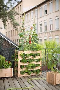 creer un potager sur mon balcon marie claire maison With comment amenager un petit jardin 4 creer un potager