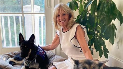Meet Major: Biden's adopted German Shepherd to be first ...