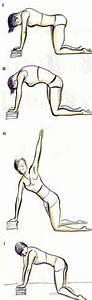 Počet svalů