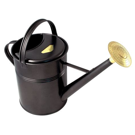 Kitchen Organization Ideas Pinterest - shop bosmere 2 3 gallon black metal traditional watering can at lowes com