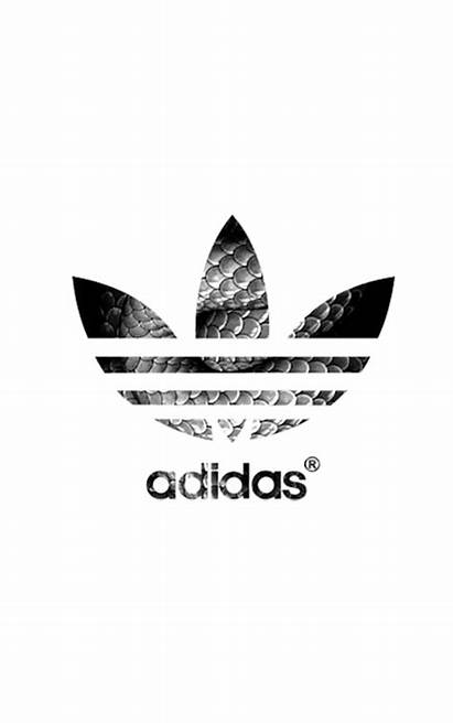 Adidas Nike Snake Wallpapers Brands Shoes Gifs