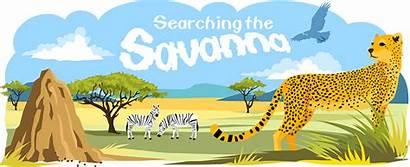 Savanna Biome Melinda Weaver Written