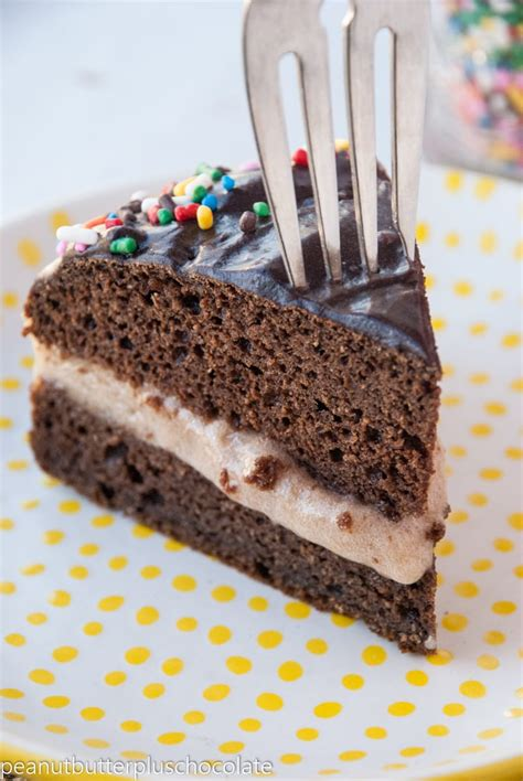 Healthy Chocolate Ice Cream Cake — Peanut Butter Plus