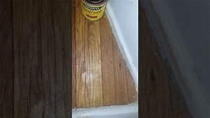 Minwax Stain Color Test On Hardwood Floors Youtube
