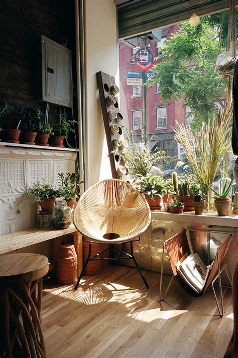 noarchitect brooklyn  plants  chair