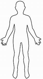 Human Anatomy Outline Drawing