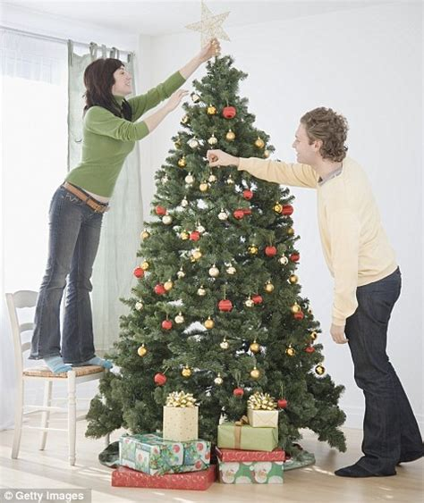 christmas trees british families now have average of