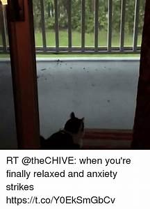 RT When You're Finally Relaxed and Anxiety Strikes ...