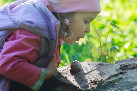 comment cuisiner les escargots comment faire manger des escargots à vos enfants nos astuces