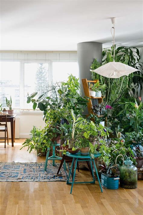 home interior decorating magazines jungle interior living and decorating with plants