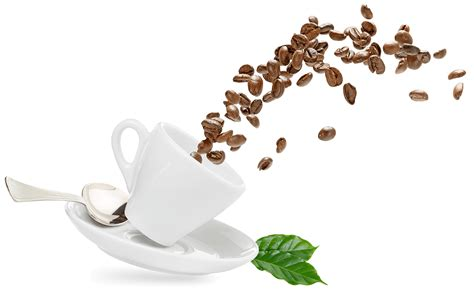 Download and use them in your website, document or presentation. Cirrusly Fresh Coffee - Get serious about fresh coffee