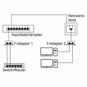 Lan Verteiler Test : netzwerk splitter verteiler 2 fach cat 5 portdoppler y adapter lan ethernet von satelliten ~ Orissabook.com Haus und Dekorationen