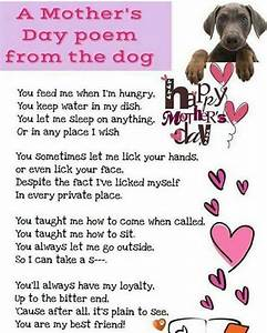 I love this slightly naughty but very apt poem from a dog ...