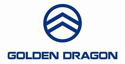 Dragon Golden Company Bus Cars Type Wikipedia