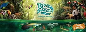 The gallery for --> Singapore Zoo River Safari
