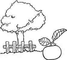 HD Wallpapers Apple Tree Coloring Pages For Preschoolers