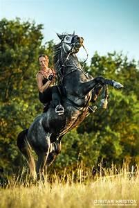 Girl Riding Rearing Up Horse  U2013 Cropped Image