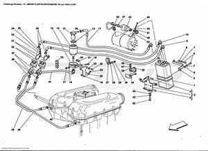 2014 Shelby Gt500 Wiring Diagram Html