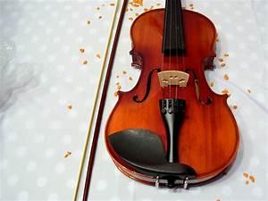Eine Violine Kaufen  U2013 Wikihow