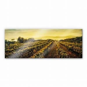 K L Wall Art : acrylglasbild panorama weinreben im sonnenuntergang f r ihre vier w nde von k l wall art wall ~ Buech-reservation.com Haus und Dekorationen