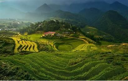 Terraces Rice Wallpapers Vietnam