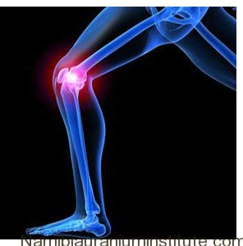 Severe Joint Pain   Namibiauraniuminstitutecom. Free Accredited Online Bible College. How To Become Professional Engineer. Building Credit For Students. Structural Engineering Courses Online. Memory Loss And Alcohol Hiring Household Help. Insurance Final Expense 2012 Dodge 3500 Specs. Tv Phone And Internet Bundles For The Home. Public Liability Insurance Definition