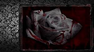 Bloody Rose Wallpaper - WallpaperSafari