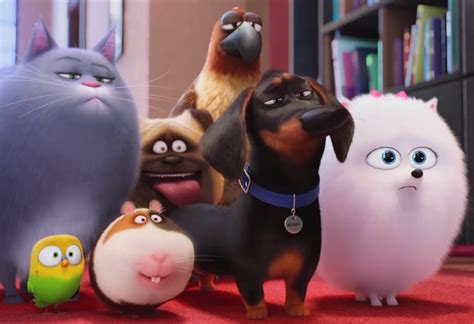 Review The Secret Life Of Pets Animated Film Flayrah