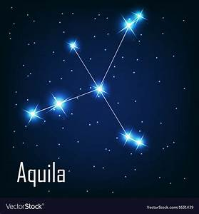 The Constellation Aquila Star In The Night Sky Vector Art