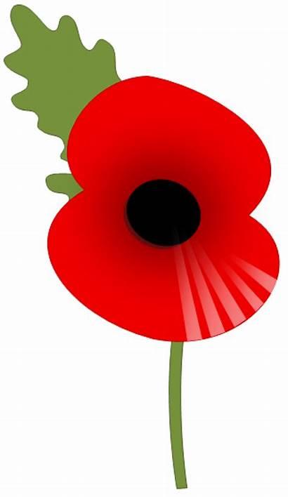 Poppy Appeal Clipart War British Legion Clip