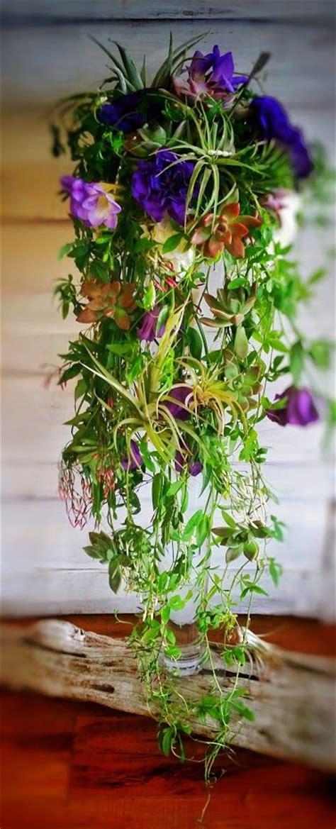 cascading succulent plants 1000 images about succulent flower arrangements bouquets on pinterest floral arrangements