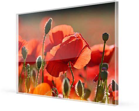 Dibond Oder Acrylglas by Alu Dibond Oder Acrylglas Im Aktuellen Vergleich Tipps