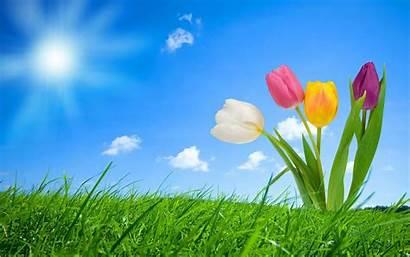 Spring Wallpapers Desktop Backgrounds Background Nature Sunrise