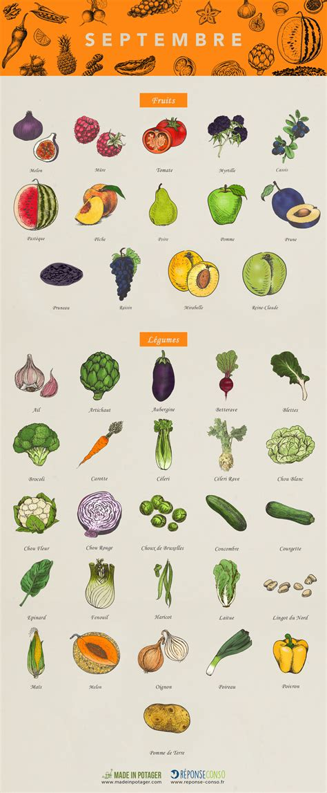 légumes de septembre calendrier fruits legumes septembre reponse conso