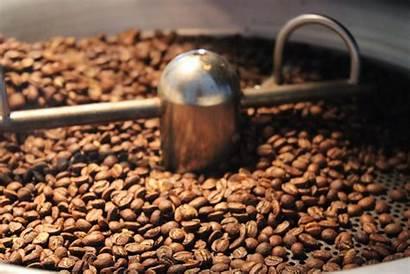 Roasting Coffee Beverage Sourcing Preparation Creating Specialty