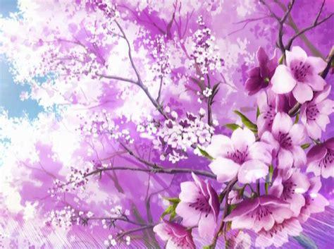 sakura wallpapers wallpaper cave