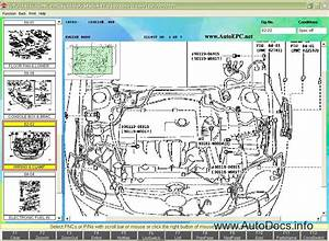 Toyota  U0026 Lexus Japan Epc 2010 Parts Catalog Order  U0026 Download