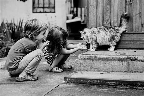 immagini di bambini che giocano allasilo foto bellissime di bambini che giocano con i loro gatti