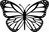 Coloring Monarch Butterfly Pages Pdf sketch template