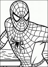 Coloring Spiderman Game Games Pages Popular sketch template