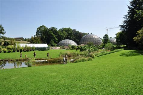Botanischer Garten Zürich Tram by 11 Family Activities For Days In Z 252 Rich