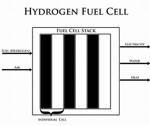 Case Study  Fuel Cells