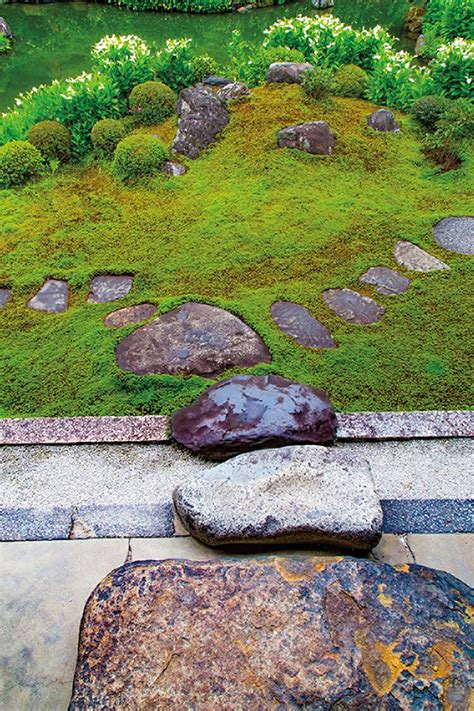 landscape architect highlights the distinct of the